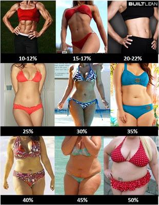 体脂肪率 女性